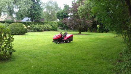 ein schöner gepflegter Rasen